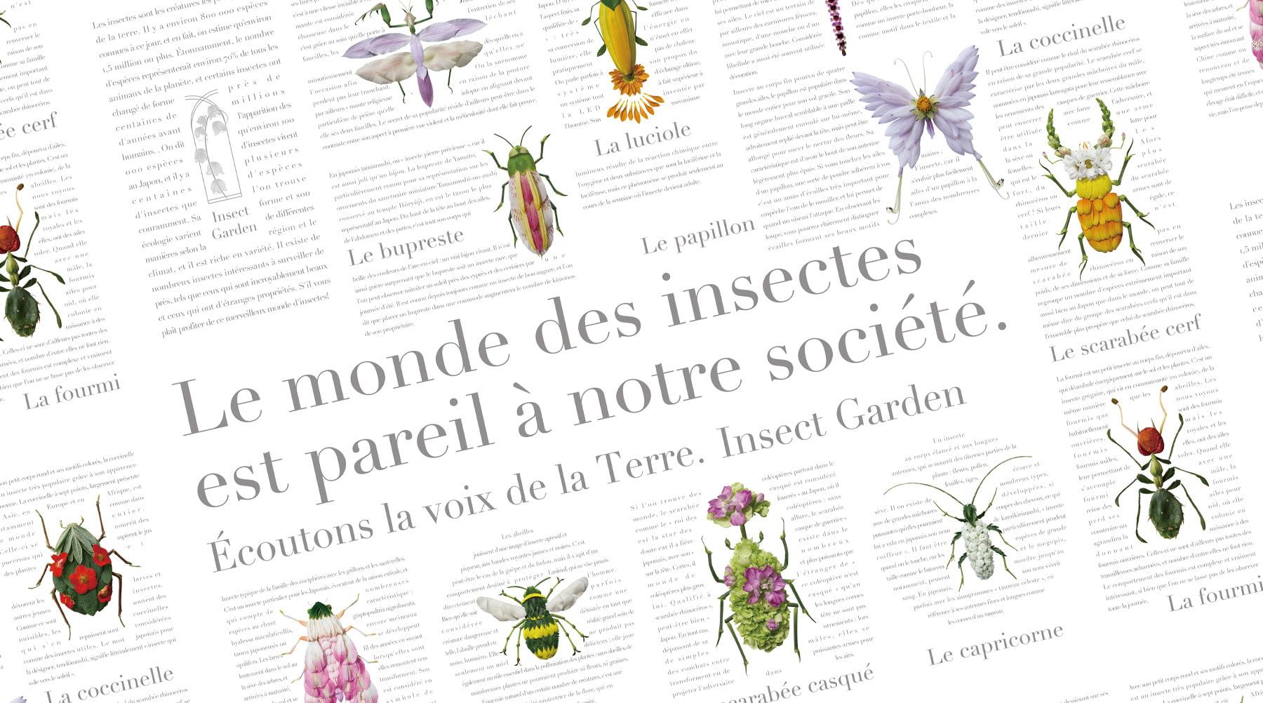 INSECT GARDEN Encyclopédie séries